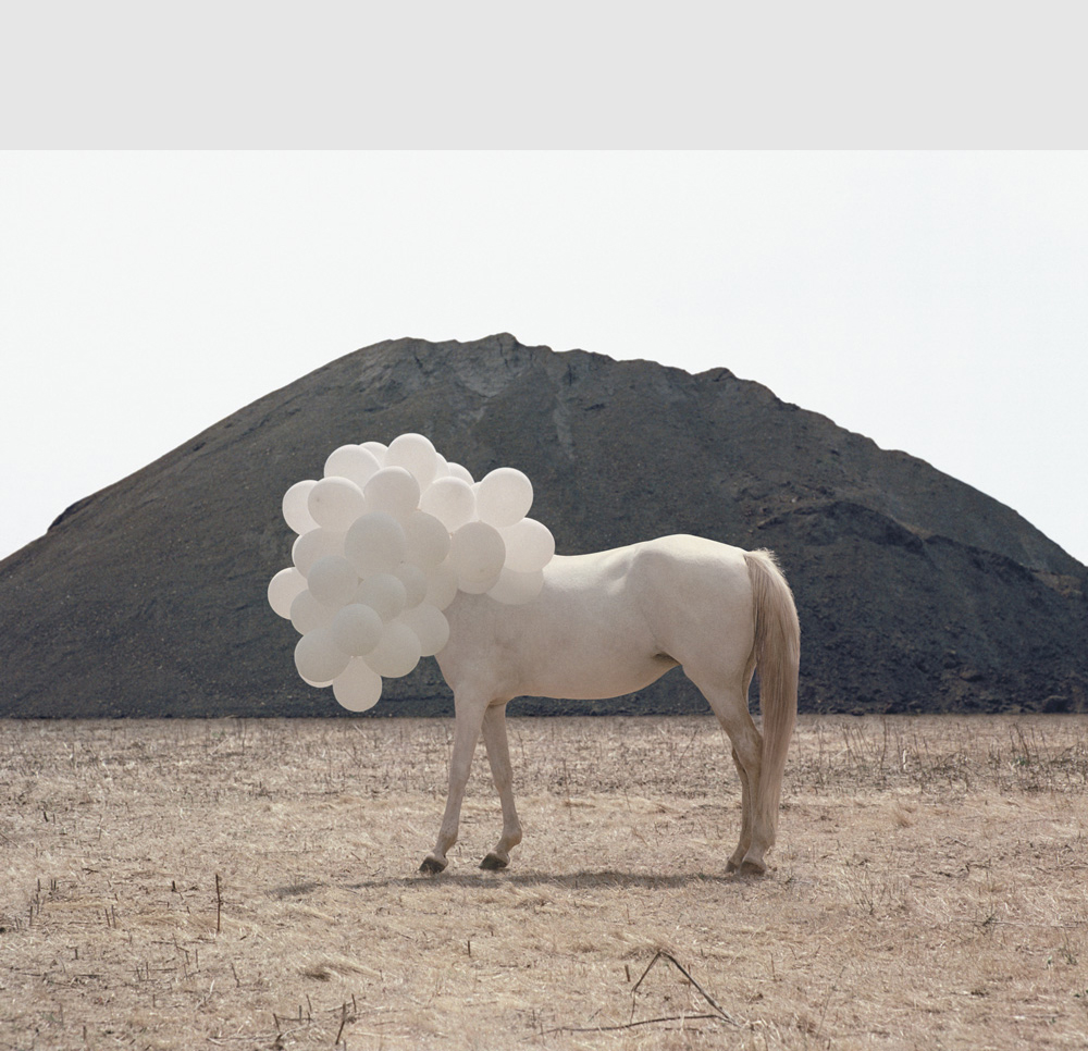 Death of an Image © Andrea Galvani